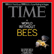 The Plight of the Honeybee - TIME