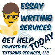 Essay Writing Help from Essay Companies