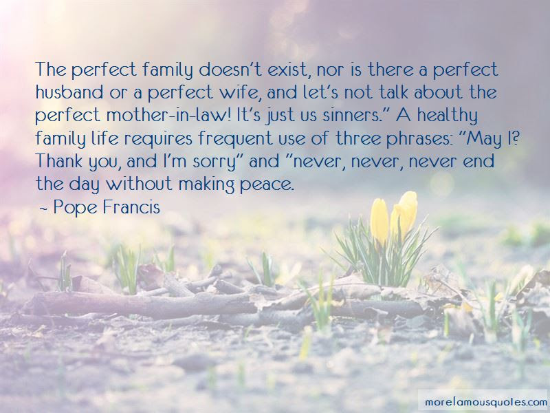 I May Not Be A Perfect Mother Quotes Top 1 Quotes About I May Not