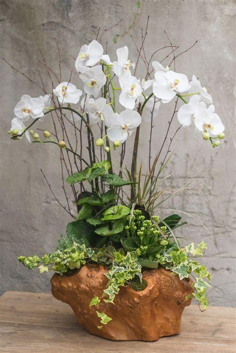 Best 25  Orchid arrangements ideas on Pinterest
