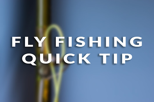 Fly Fishing Quick Tip: Easy Way to String Fly Line | The Fly Fishing Basics