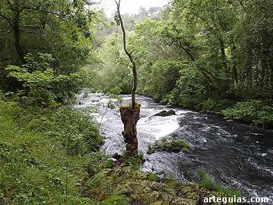 Paisaje del río Deza junto a Carboeiro