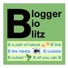 Blogger BioBlitz full-size logo, bird-free