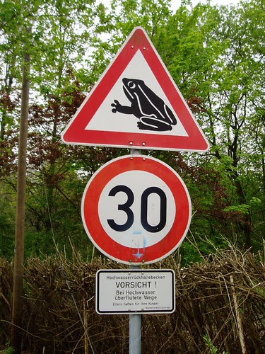 Frog Crossing by drobnikm