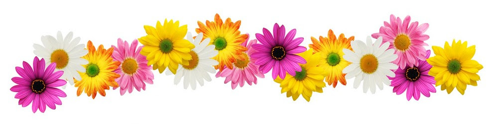 Free Flowers Border Download Free Clip Art Free Clip Art On