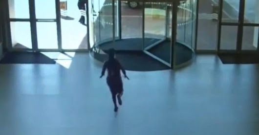 'Shoplifter' attempts clean getaway but runs straight into spotless glass window