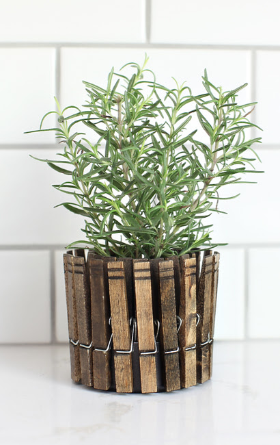 clothespinplanters rosemary1 DIY CLOTHESPIN HERB PLANTERS