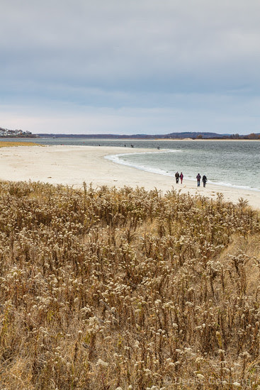 walking on Crane Beach, looking across the water at Plum Island