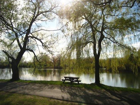 Photos of Toronto Island Park, Toronto