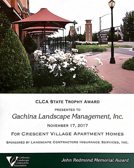 Gachina receives the John Redmond Memorial Award for Crescent Village Apartments Homes, CLCA State - Gachina Landscape Management