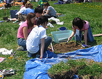Archaeological Dig at the Ontario Student Clas...