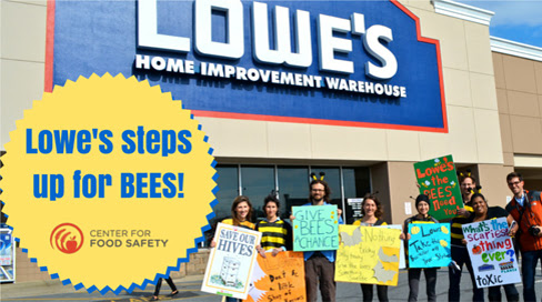 Center for Food Safety | News Room | Lowe's Agrees to Phase Out Bee-Toxic Neonicotinoid Insecticides