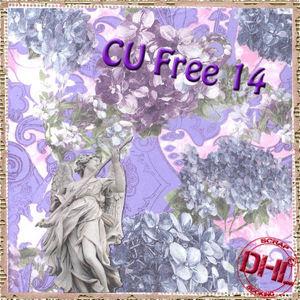 Dhl_CUfree14