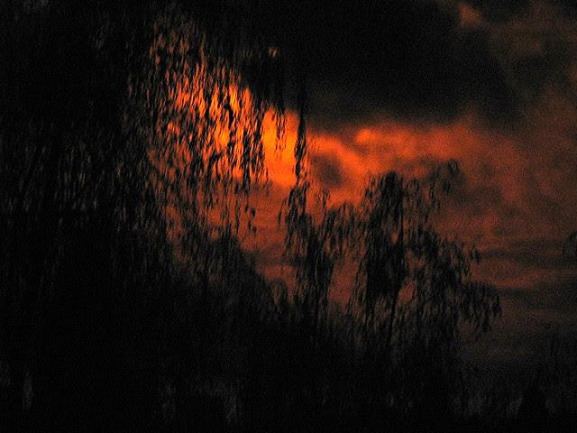IR Sunrise