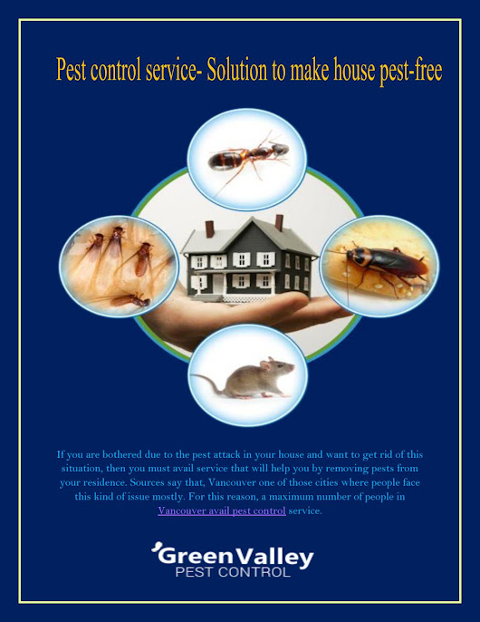Pest control service solution to make house pest free