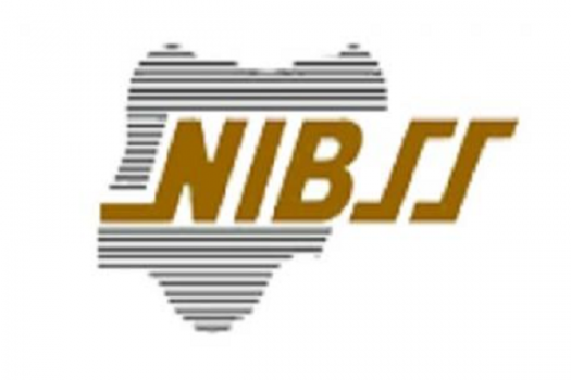 Software Developer at Nigeria Inter-Bank Settlement System Plc (NIBSS)