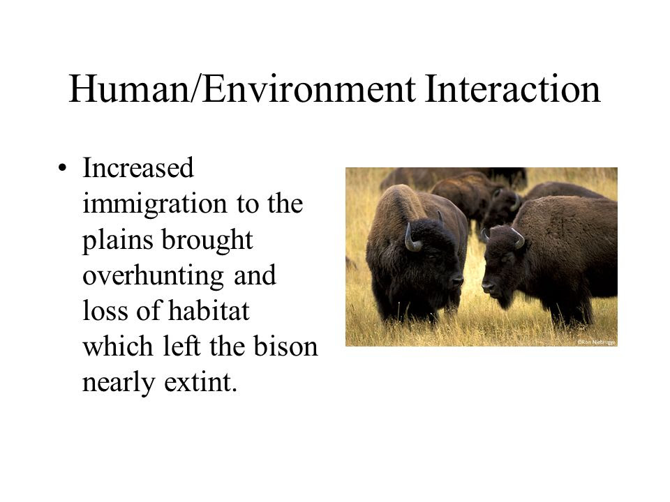 Human%2FEnvironment+Interaction