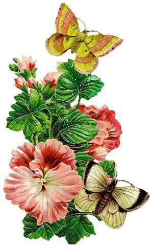 http://mycenes.m.y.pic.centerblog.net/r6xm7aev.jpg