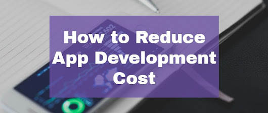 How to Reduce App Development Cost - App Expanse