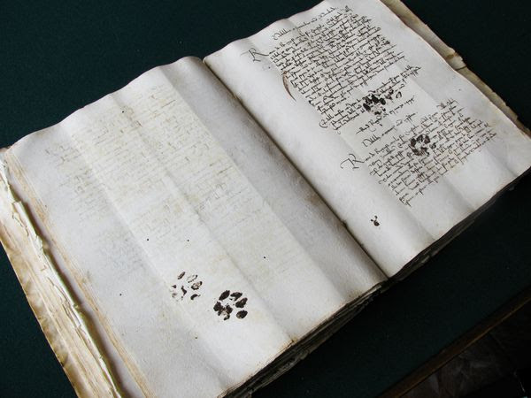 medieval-manuscript-cat-paw-prints_65668_600x450