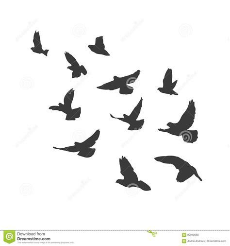 Pigeons Cartoons, Illustrations & Vector Stock Images