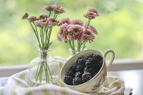 you knew there would be blackberries