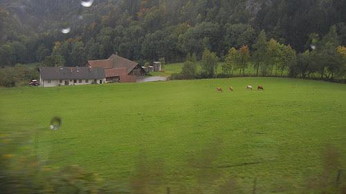 DSCN1967 - From Vienna to Graz, October 2012