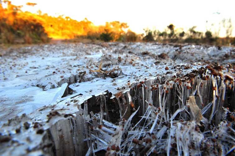 Frio congelou a paisagem de São José dos Ausentes:imagem 1