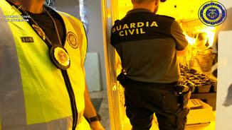 Dos agents de la Guàrdia Civil en el desmantellament d'una plantació de marihuana a Segur de Calafell (ACN)