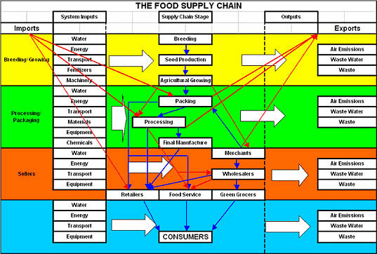 the-food-supply-chain