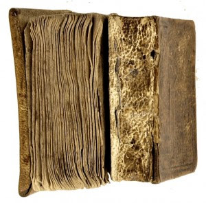 Los libros siameses2