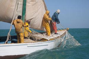 شركة تونسية تطور منظومة بالأقمار الصناعية تساعد على البحث والإنقاذ في البرّ والبحر