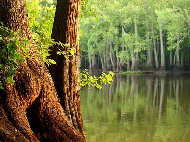 Hickson Lake