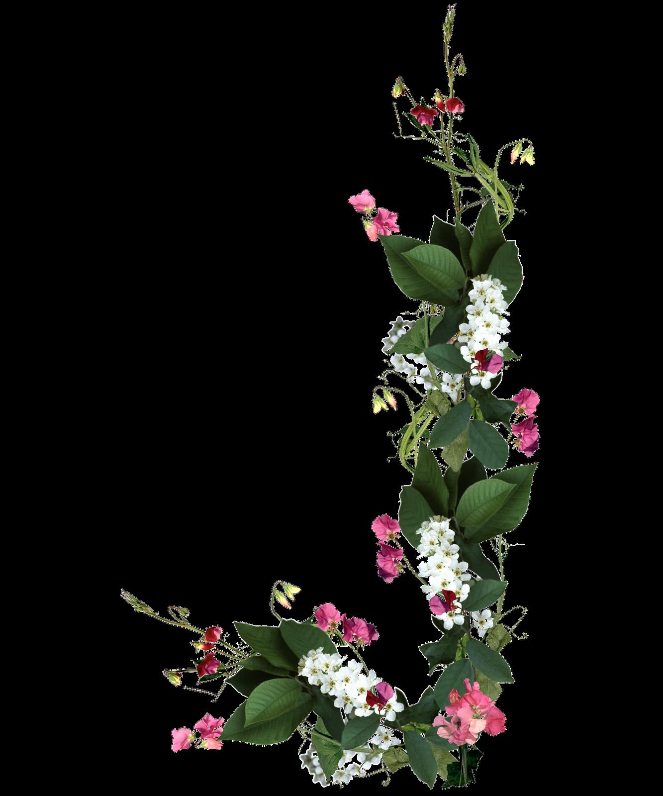 8 Flores Para Photoshop PNG Images - Border Frames for ...