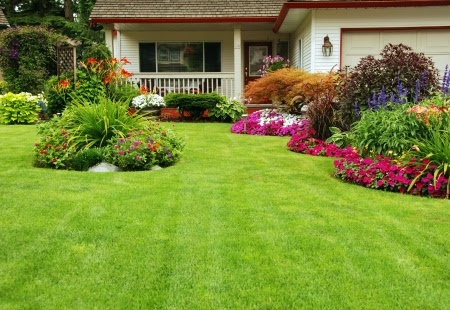 Summer Lawn and Landscaping Tips | Mansell Landscape