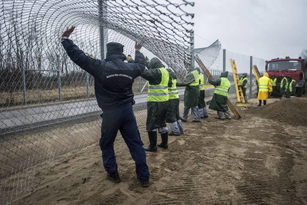 Varios presos trabajan en la construcción de la nueva valla entre Serbia y Hungría, en Kelebia, el 1 de marzo.