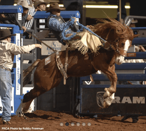 RAM National Circuit Finals Rodeo in Kissimmee, Florida
