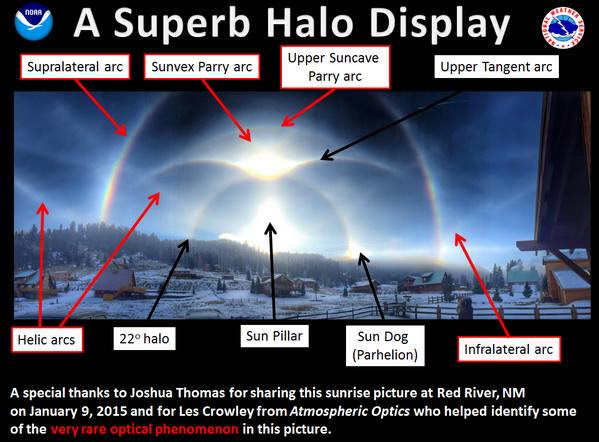 halo-display-labeled