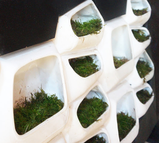This Modular Green Wall System Generates Electricity From Moss | ArchDaily