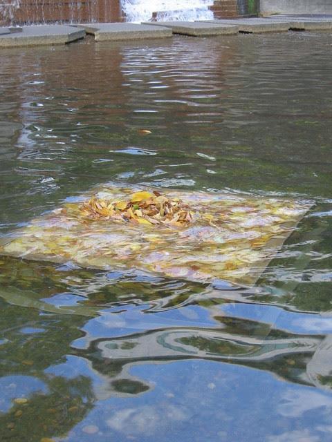autumn leaves, lovejoy fountain