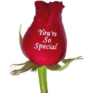 You Are So Special La Bella Gift Baskets Shop