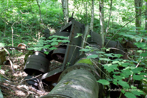 Abandoned Penstock & Turbine in Westmore (looking uphill)-3.jpg