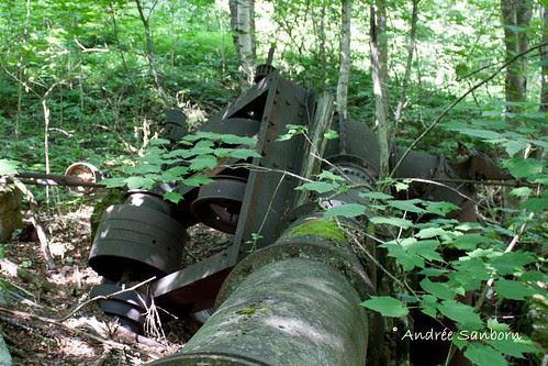 Abandoned Penstock & Turbine in Westmore (looking uphill)-3.jpg