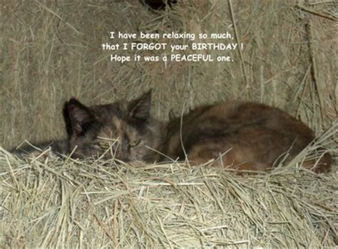 Belated Birthday Kitty. Free Miss You eCards, Greeting