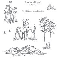 In The Meadow Clear-Mount Stamp Set