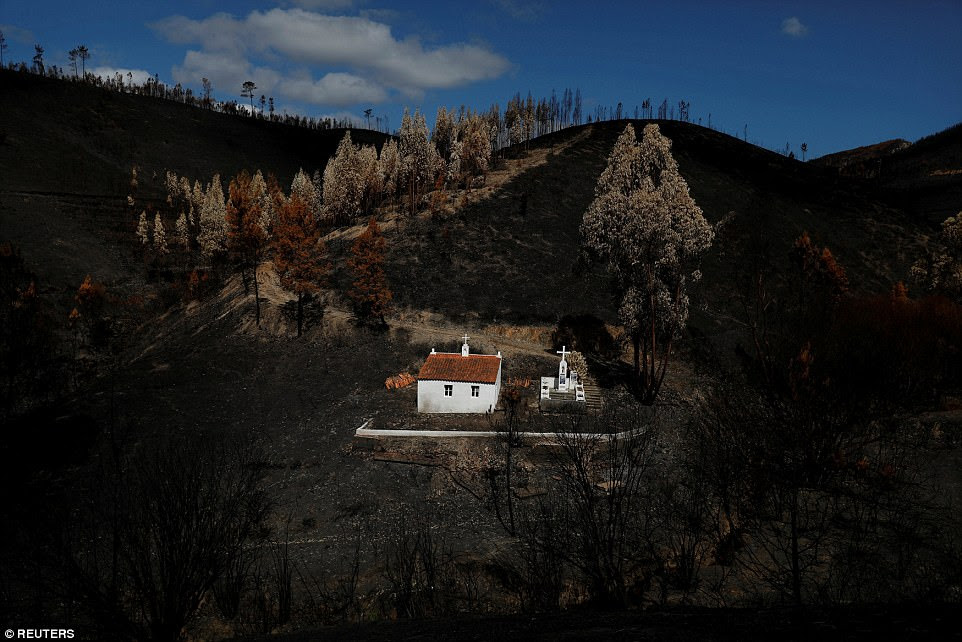 A shrine is seen after a forest fire near the village of Serta, Portugal, on September 9. Wildfires would trap thousands in central Portugal and more than 60 had died by the time the blazes had been brought under control in the country
