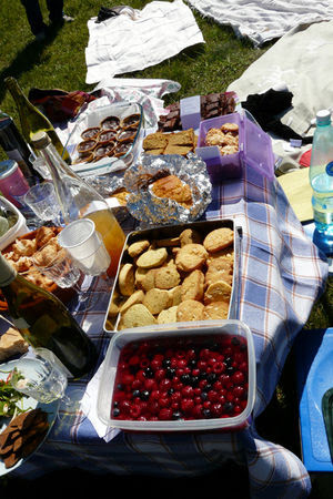 picnic_sucr__5