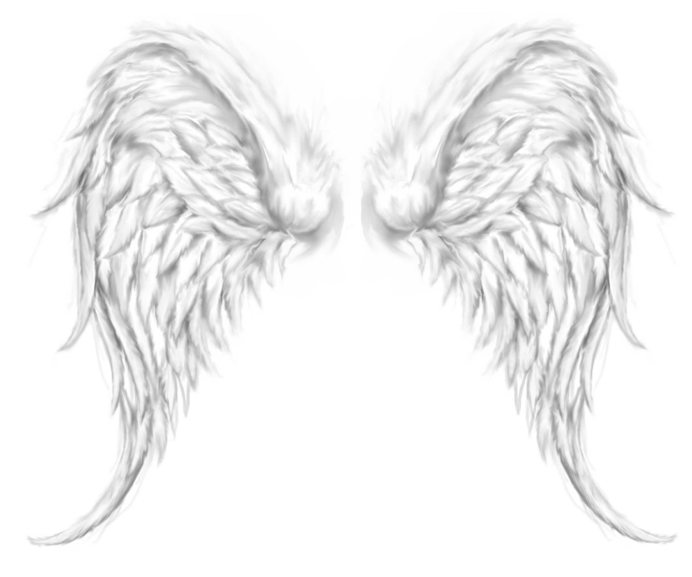 Grey Ink Angel Wings Tattoo Design