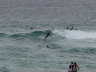 Australia Trip April 2010
