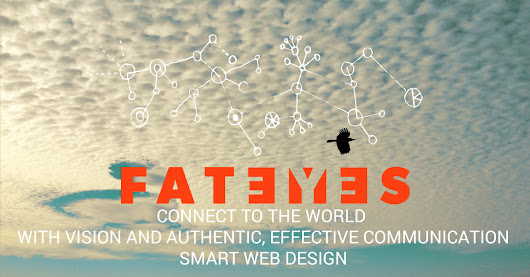 Santa Barbara Web Design & Web Development: Fat Eyes
